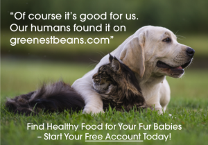 Find healthy and safe foods for your lovey pets
